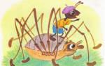 Бьянки как муравей домой спешил