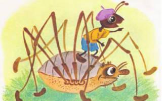 Сказка как муравей спешил домой