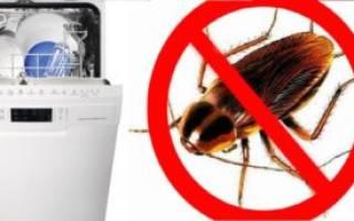 Тараканы в посудомоечной машине как избавиться