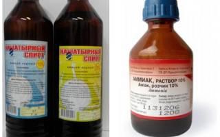 Как избавиться от муравьев на дачном участке нашатырным спиртом