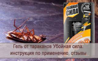 Гель от тараканов убойная сила