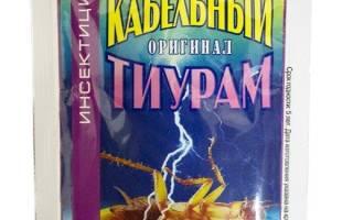 От тараканов тиурам
