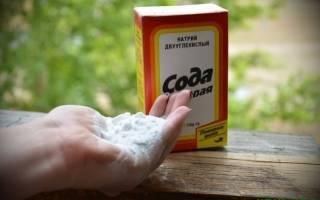 Как избавиться от муравьев на дачном участке с помощью соды