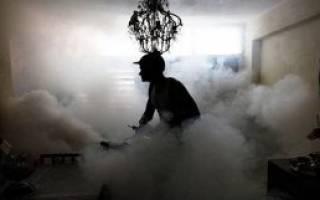 Туман от тараканов