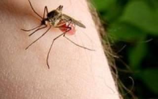 Волдыри как от укусов комаров чешутся