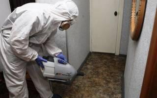 Как избавиться от запаха в квартире после травли клопов